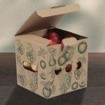 Nachhaltige Obst und Gemüse Verpackung für ca.1,75-2Kg Variante 1 mit Inhalt