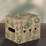 Box_groesse2_mit_Deckel_zu