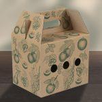 Box_groesse2_mit_Tragegriff
