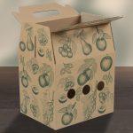 Box_groesse2_mit_Tragegriff_offen