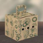 Box_groesse2_mit_rundemGriff_zu